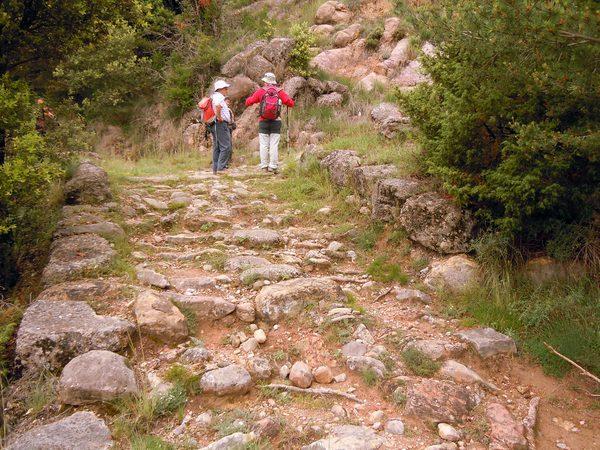 La Via Romana de Capsacosta es una antigua calzada romana milenaria que se ha conservado hasta nuestros días y que pasa junto al Valle de Bianya y el pico de Capsacosta, entre las localidades de Sant Salvador de Bianya y Sant Pau de Seguries