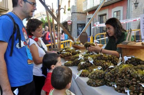 La Feria de la Castañera es una excelente oportunidad de conocer los productos gastronómicos tradicionales y de temporada que tiene el Ampurdán, como por ejemplo estas castañas crudas