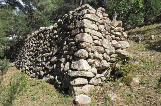 También la Punta d'es Mut, en Aiguablava, Begur, se encuentra todavía restos de muros de piedra que desde hace siglos formaban parte de este paisaje de cultivo de viña