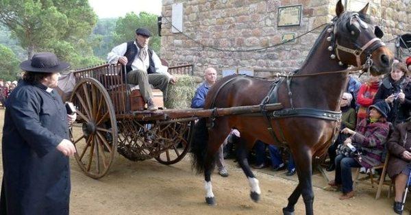 El arriero (traginer) llega con su carro y su caballo hasta la Ermita de las Alegrías, donde tiene lugar esta celebración tan entrañables entre los habitantes de Lloret de Mar y sus visitantes