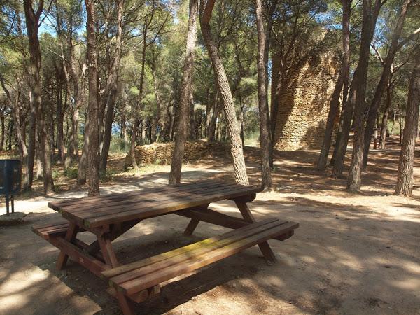 La Torre Mora de Pals se encuentra rodeado de una zona de picnic bajo la sombra de los pinos que la hace ideal para un desayuno o almuerzo.